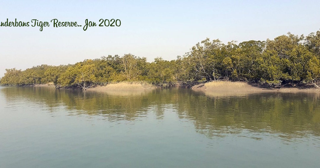 Photo journey through the Sunderbans